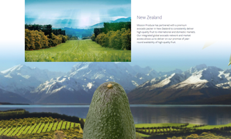 Mission NZ Avocados